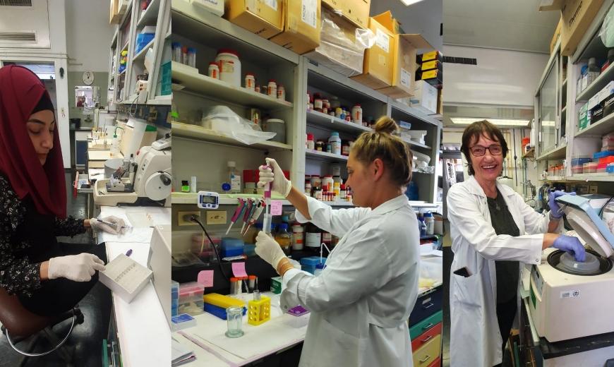 بروفيسور روت غابيزون - ابتكار من شأنه أن يؤخّر أمراض الدماغ الضّمورية